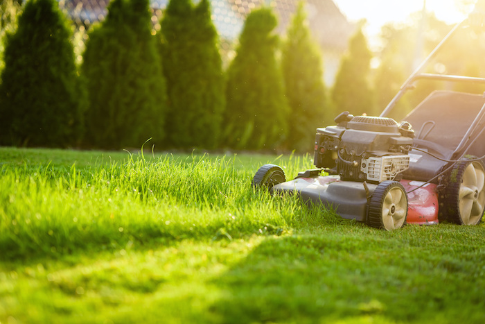 7 Ways to Burn Calories Without Going to the Gym; Lawn mower cutting green grass in sunlight